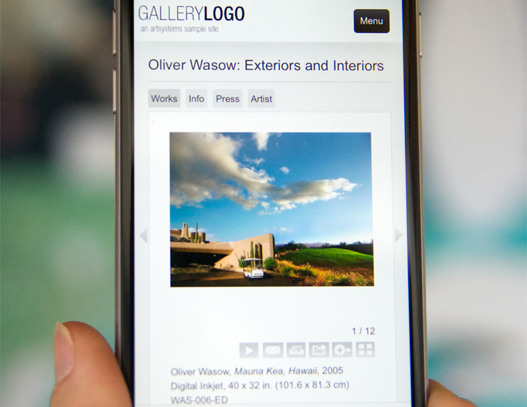 Mobile-Friendly Website View on iPhone